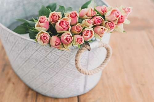 imágenes gratis Ramo de Rosas