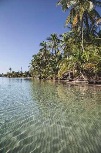 imágenes gratis Panama