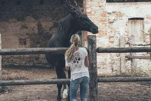imágenes gratis Mujer y caballo