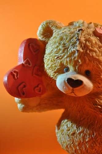 Adorno de oso tierno
