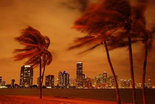 imágenes gratis Miami