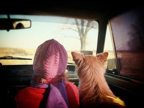 Niña viajando con su mascota