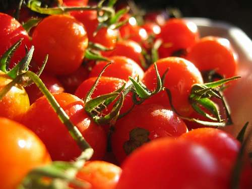 imágenes gratis tomate, tomates, fruta, verdura, rojo, ingrediente