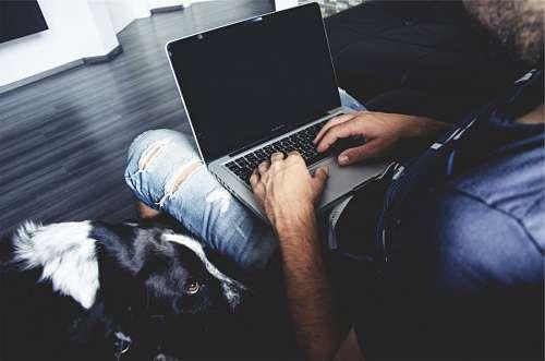 imágenes gratis Hombre con laptop