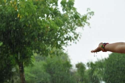 imágenes gratis una persona, gente, mujer, mano, lluvia, vista de