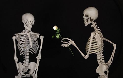 Esqueletos enamorados