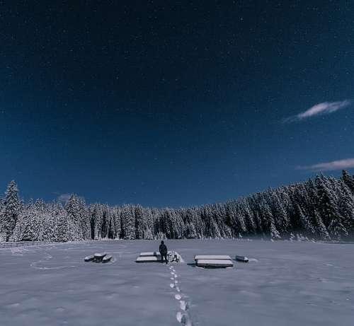imágenes gratis Noche en la nieve