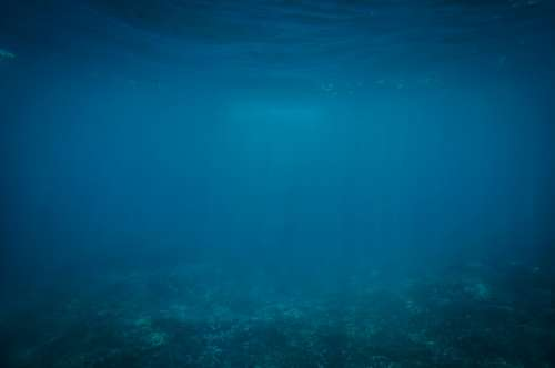 imágenes gratis Fondo del mar