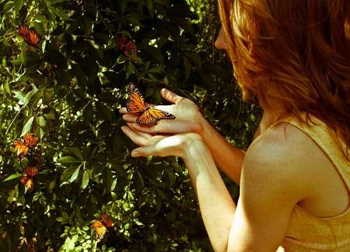 Mujer sosteniendo una Mariposa