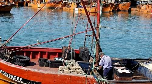 una persona, hombre, mar del plata, barco, pesquer
