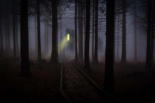 Casa misteriosa en el bosque