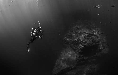 imágenes gratis hombre buceando en blanco y negro