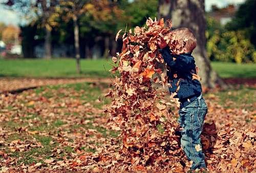 Niño jugando en el parque con hojas secas