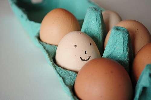 imágenes gratis alegria, felicidad, cara, sonrisa, huevo, huevos,