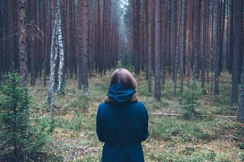 imágenes gratis Mujer en el bosque