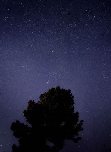 imágenes gratis Estrellas