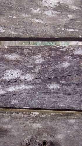 madera, fondo, background, tabla, tablas, vista de