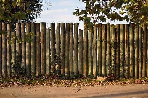 Pared de troncos locacion
