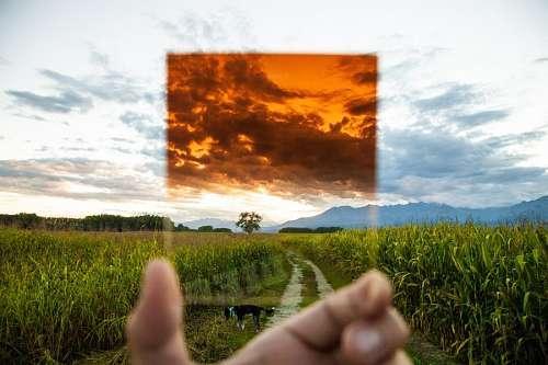 imágenes gratis Tomar fotos con celular