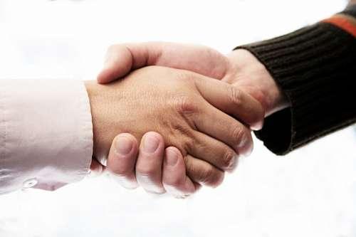 trato, mano, Manos, confianza, negocios, concepto,