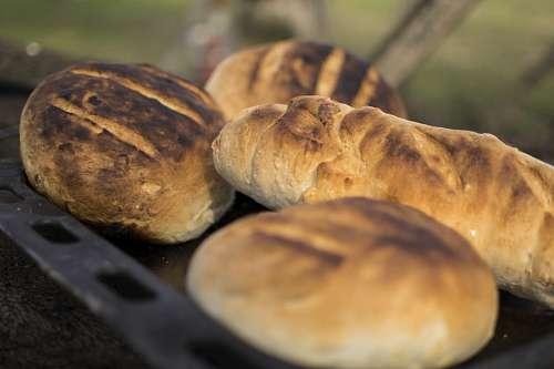 imágenes gratis Pan de Campo