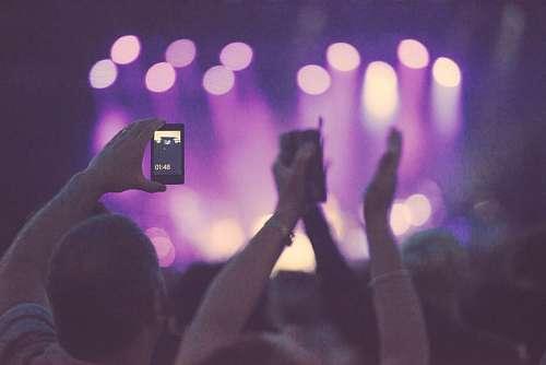 imágenes gratis Grupo de Personas en Concierto