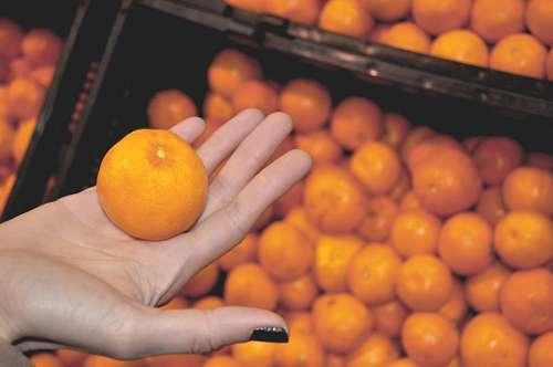 imágenes gratis Mano de Mujer sosteniendo una naranja