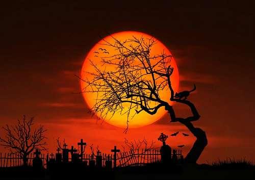 imágenes gratis Cementerio