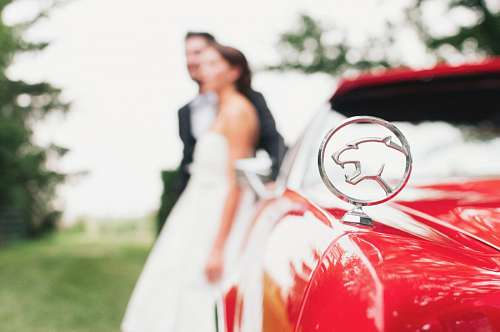 imágenes gratis Jaguar con pareja de novios en segundo plano