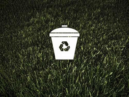 Ecología y medio ambiente