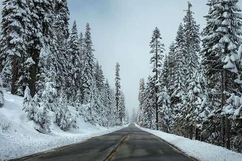 imágenes gratis Carretera nevada