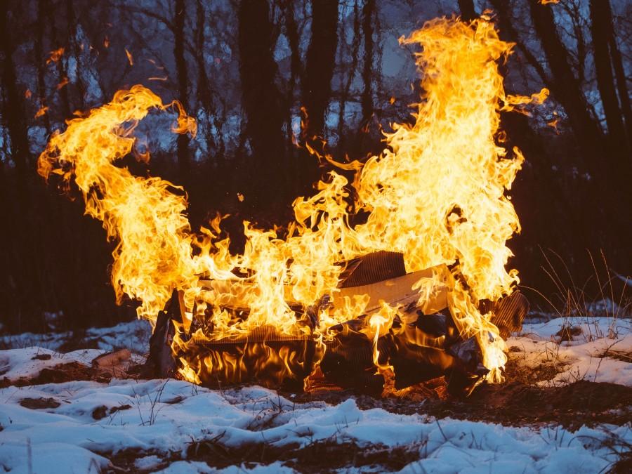 hoguera, llamas, madera, troncos, nieve, naturaleza, aire libre, arboles, madera, fuego, fogata, calor,