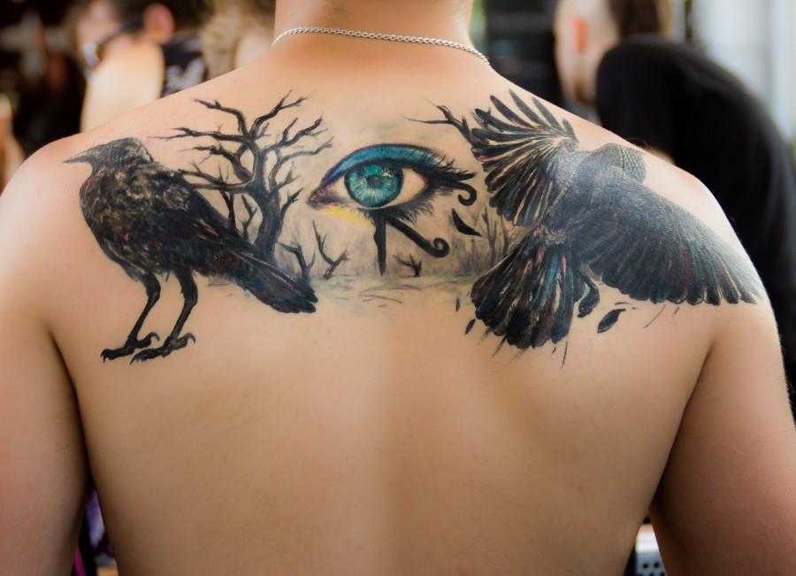 tatuaje, cavar, ojo, negro, color, gótico , fotos gratis,  imágenes gratis, aves, cuervo, ojo de horus, espalda, hombre, joven, chico, masculino