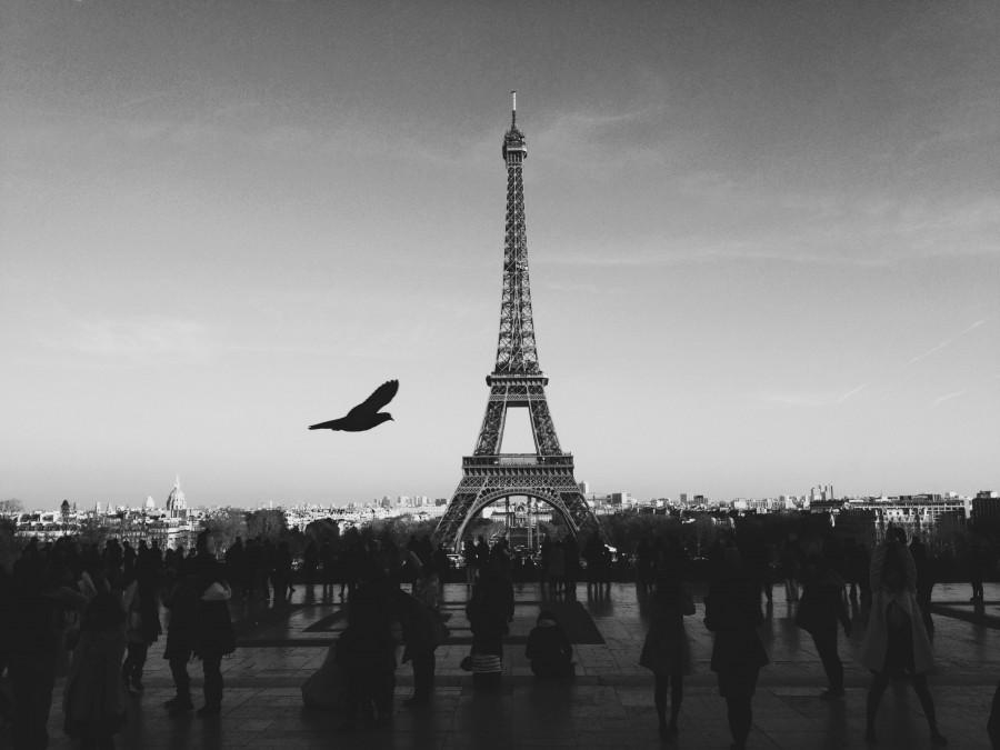 francia, europa, monumento, ciudad, capital, paris, torre, eiffel, blanco y negro,