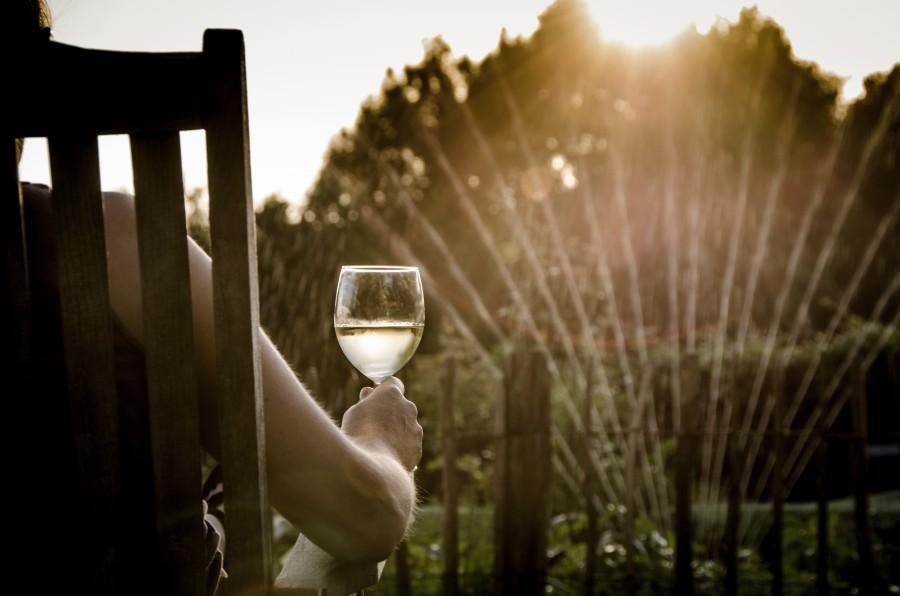 hombre, copa, vino, atardecer, exterior, jardin, riego, regar, relax, copa, agua, silla, una persona, gente, sentado, naturaleza, tranquilidad, bebida, casa,