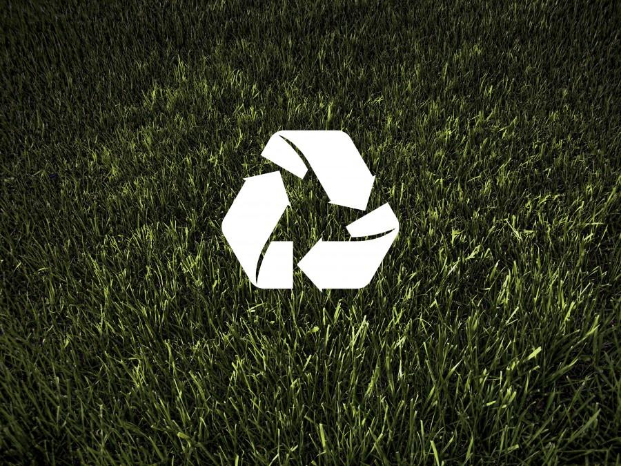 imagen de ecolog u00eda y medio ambiente