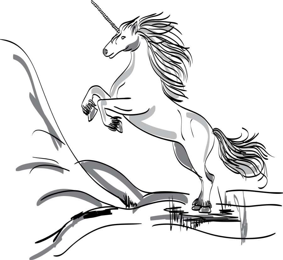 imagen de imagen de unicornio para colorear foto gratis 100011187