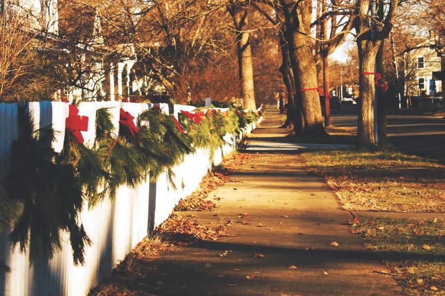 navidad, detalle, adorno, navideo, navidea, decoracion, celebracion, 2015, festejo, urbano, vereda, calle,
