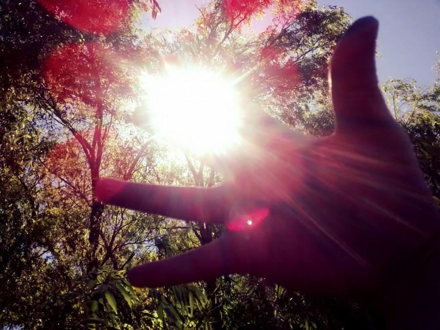 mano, concepto, luz, atardecer, sol, naturaleza, una persona, dia, alegria,