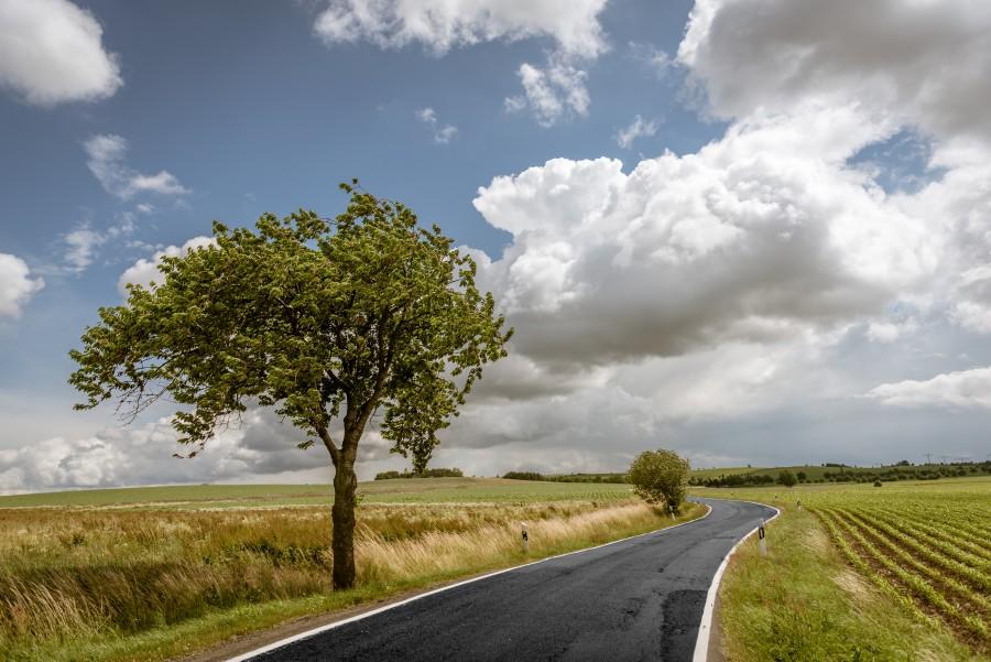 Paisaje, campo, nadie, ruta, carretera, camino, escena rural, asfalto, arbol, naturaleza, uno, verano,