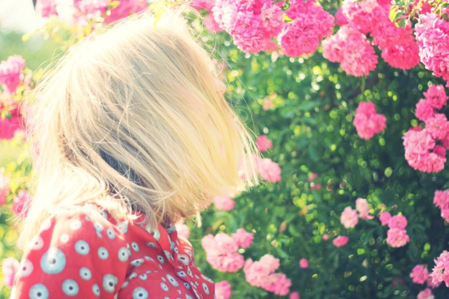 una persona, gente, mujer, rubia, rubio, atardecer, joven, adolescente, paisaje, ocaso, puesta de sol, dorado, belleza, naturaleza, relajacion, serenidad, cabello, tranquilidad, viajar, viaje, vacaciones, flores, rosa, florido, primavera,