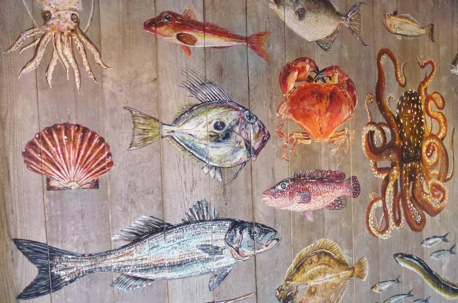 marino, pintura, pez, peces, mural, pared, arte,