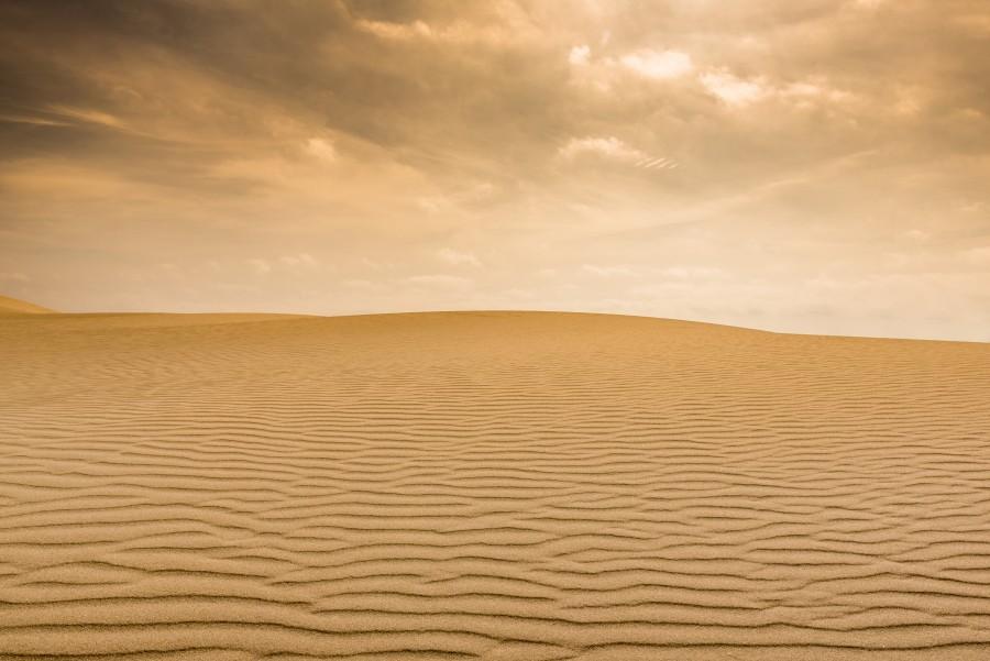 Imagen de Desierto - 【FOTO GRATIS】 100008077