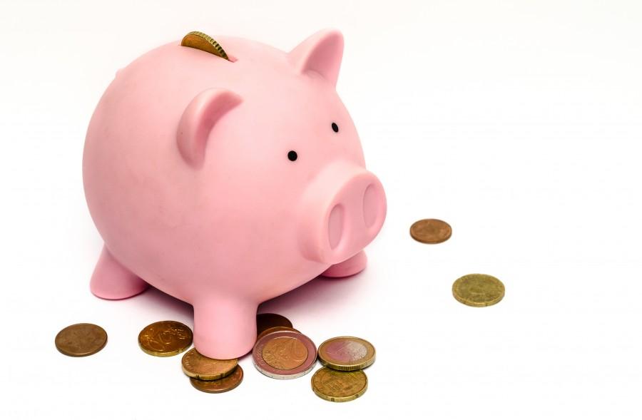 alcancia, chancho, cerdo, moneda, ahorro, dinero, fondo blanco, nadie, finanzas, concepto,