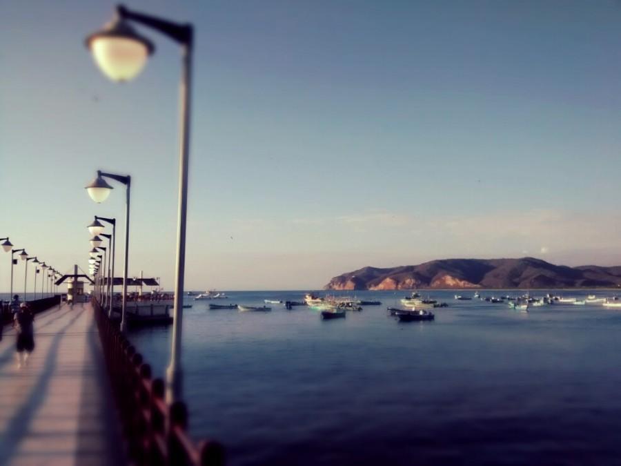 Puerto Lopez, ecuador, paisaje, ave, muelle, costa, pacifico, america latina, latino,