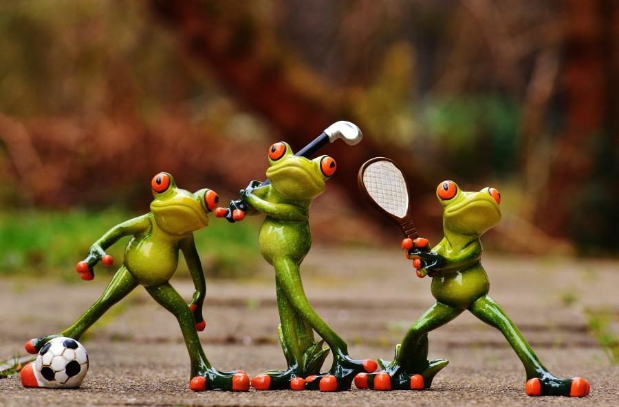 ranas, atletas, deportes, deportistas, futbol, tenis, golf, pelota, raqueta, ocio, movimiento, diversión, gracioso, imagenes gratis, muñecos, adorno