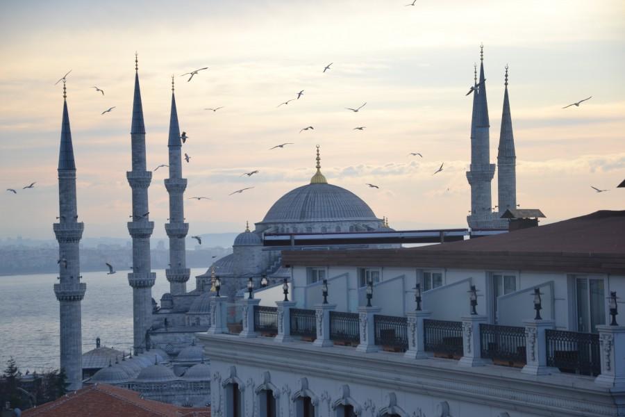 Estambul, Turquia, distrito, famoso, Sultanahmet, torre, viaje, vista, turco, Topkapi, noche, horizonte, minarete, tradicional, Asia, otomana, turista, arquitectura, panorama, puesta del sol, turismo, paisaje urbano, mezquita, urbano, centro, ciudad, azul, europa, paisaje