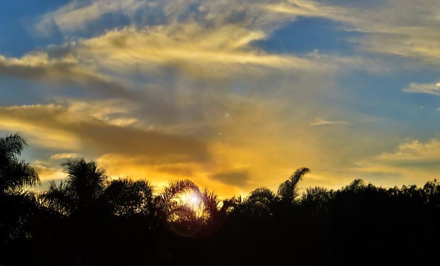 atardecer, selva, naturaleza,cielo,ocaso, puesta de sol, nadie, naturaleza,