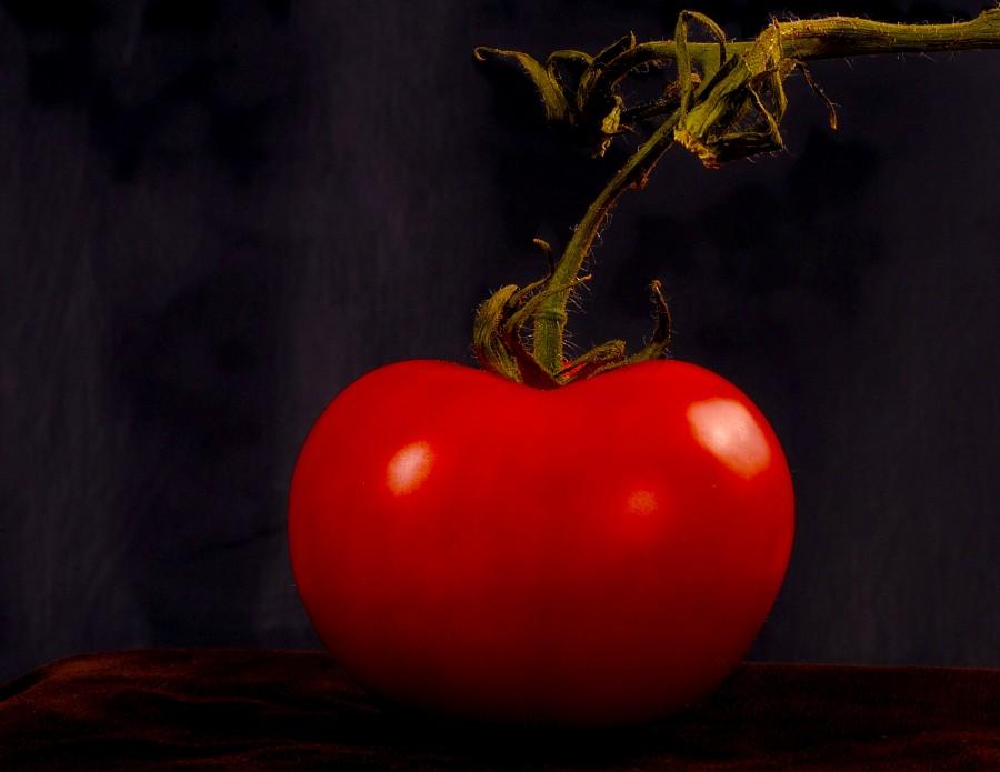 tomate, fruta, verdura, rojo, uno, primer plano, fondo negro,