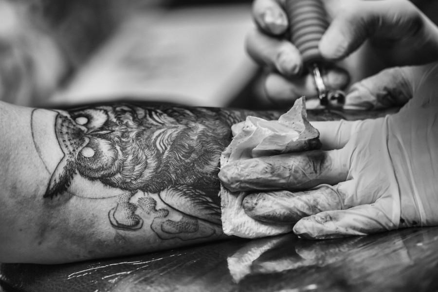 lechuza, tatuaje, ave, decoración, decorativas, diseño, dibujo, pluma, animales, símbolo, tribales, vintage, artista , fotos gratis,  imágenes gratis, tatuador, tatuando, cliente, brazo, blanco y negro
